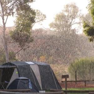 Ayers Rock Resort Campground
