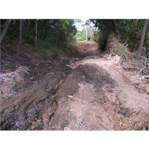 Telegraph Track - Cockatoo Creek