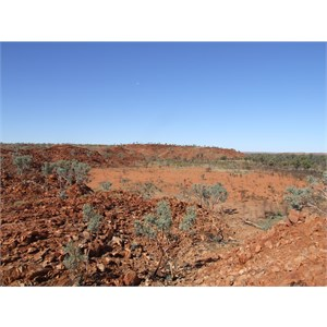 Turtle Rockhole – Throssell Ranges (Rudall River)