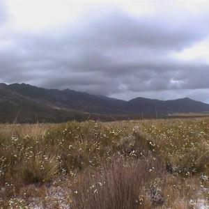 Climes Track, Mount Heemskirk Regional Reserve Boundary