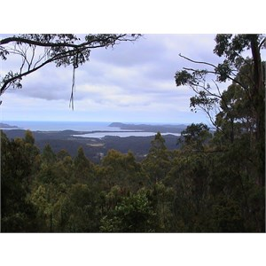 Cloudy Bay Lookout