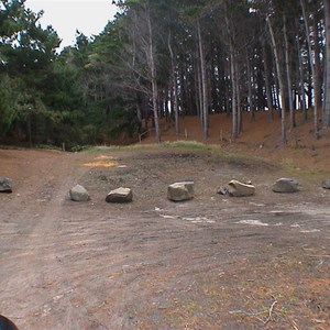 Pines Camping Area