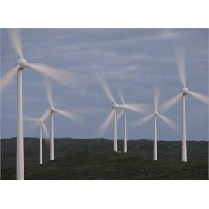 Grasmere wind farm