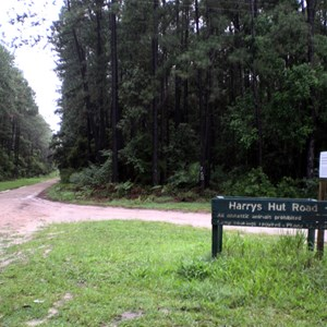 Cooloola Way & Harry's Hut Rd