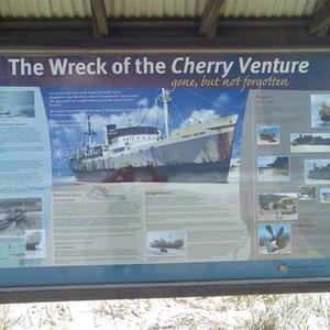 Cherry Venture
