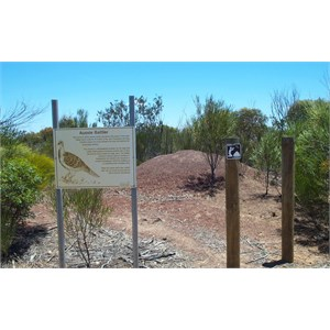 Mallee Fowl's Nest