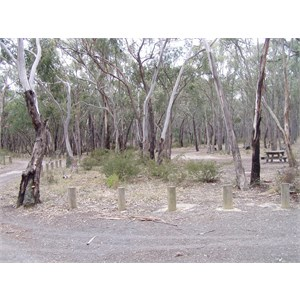 Bore Gully Campground