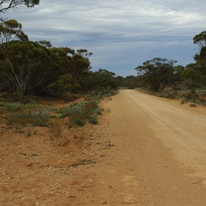 Old Telegraph Lines & Rabbit Proof Fence