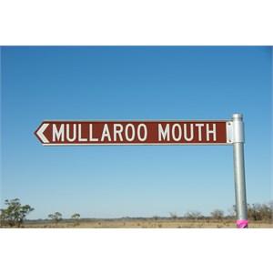 Mullaroo Mouth Turn Off