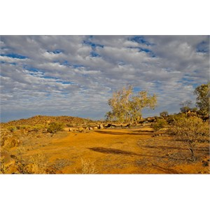 Sturt National Park Campsite
