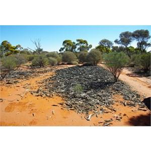 Remains of Old Sandalwood Camp