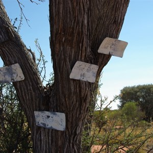 Salt Creek Junction and Tree Markers