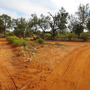 Track Junction (Neale Junction Camp 179km)