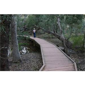Foot Bridge over Wilpena Creek