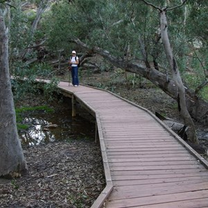 Foot Bridge over Wilpena Creek