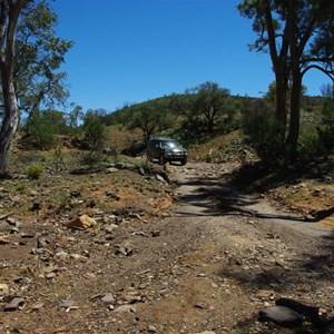 Gully (Nuccaleena Creek)