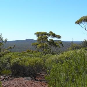 Bungalbin Hill