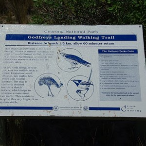 Ocean Beach Walking Sign