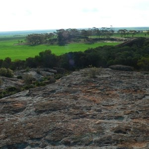 view from Buntine Rock