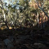 Rudall River - A death march of discovery through the remote Broadhurst Ranges - Part 1