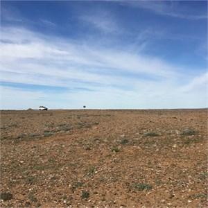 The Desert Ground or rock farm