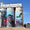 Visiting South Australia's Latest Silo Art - Cowell
