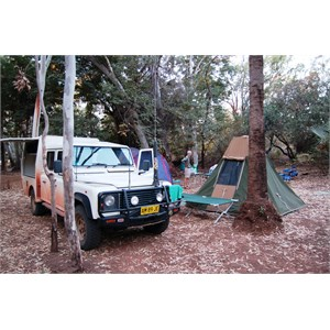 "Camping in ""The Grove"""