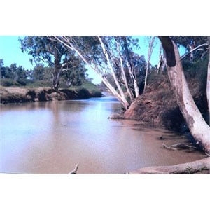 Cooper Creek at Innaminka