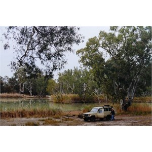 Camp beside a Murray River billabong