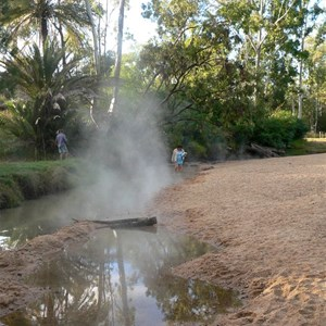 Mist rises from the hot water that feeds the stream at Innot Hot Springs.
