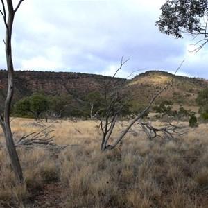 Looking east to the Gundabooka Range