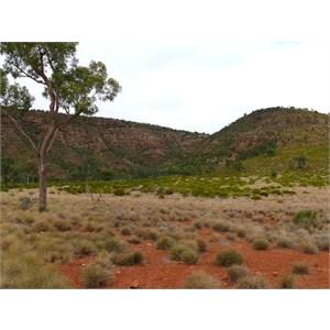 Gundabooka Range