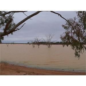 Lake Pinaroo with plenty of water.