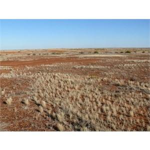 Diamantina NP landscape