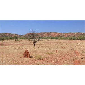 Dry, rugged country south of Mt. Isa