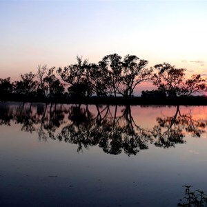 Dawn over the billabong