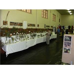 Mullewa Flower Show