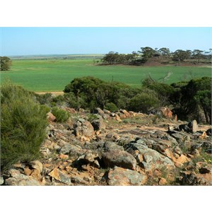 View from the top of Buntine Rocks