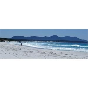 The beautiful beach at Pt. Ann