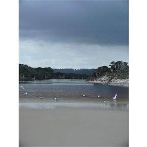 A monochrome landscape under a leaden sky