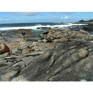 Rocky Shore, Starvation Harbour