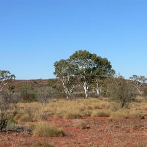 Batton Hill, NE Simpson Desert