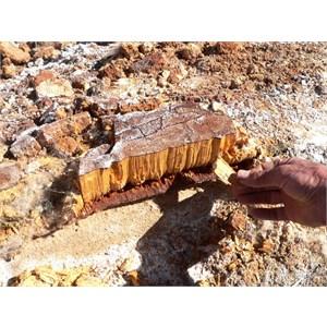 Unusual crystals at Purnie Bore