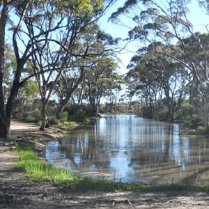 Bromus Dam - overflow pond