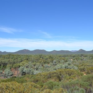 It's a big place, that Wilpena Pound