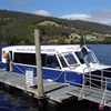 Cruise down the Huon River, time at the Wooden Boat Centre and a trip to Cygnet and back