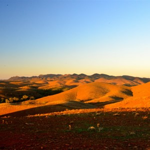 Flinders Ranges - Stokes Hill