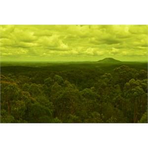 Mt Yengo, Yengo National Park
