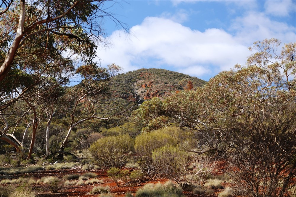 Cape York via Simpson Desert 3 June 2015 – Day 2 @ ExplorOz
