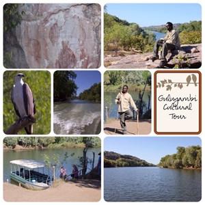 Guluyambi Boat Cruise
